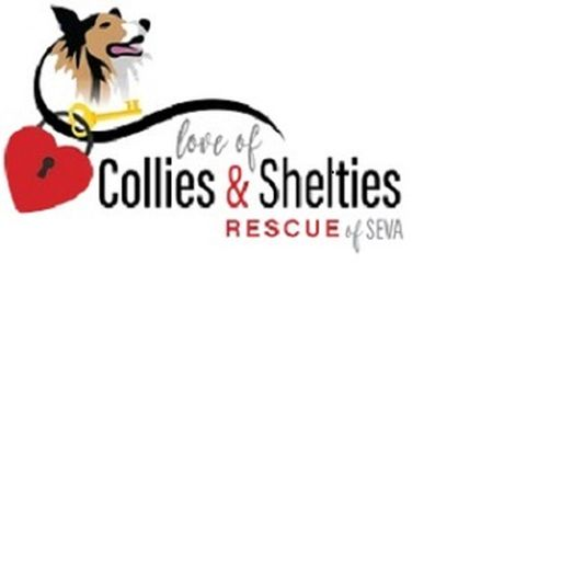 "Love of Collies and Shelties Rescue of SeVA ""Locs of SeVA"""